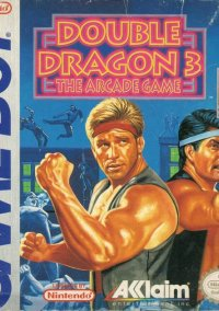 Обложка Double Dragon III: The Arcade Game