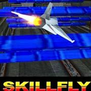 Обложка Skillfly