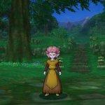 Скриншот Dragon Quest X – Изображение 3