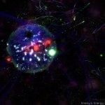 Скриншот Star-Twine – Изображение 13
