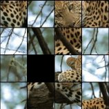 Скриншот Animals Puzzle