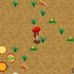 Скриншот Harvest Moon: Sunshine Islands – Изображение 1