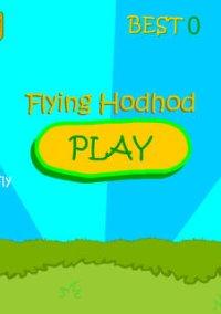 Обложка Flying Hodhod