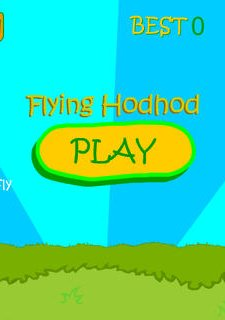 Flying Hodhod