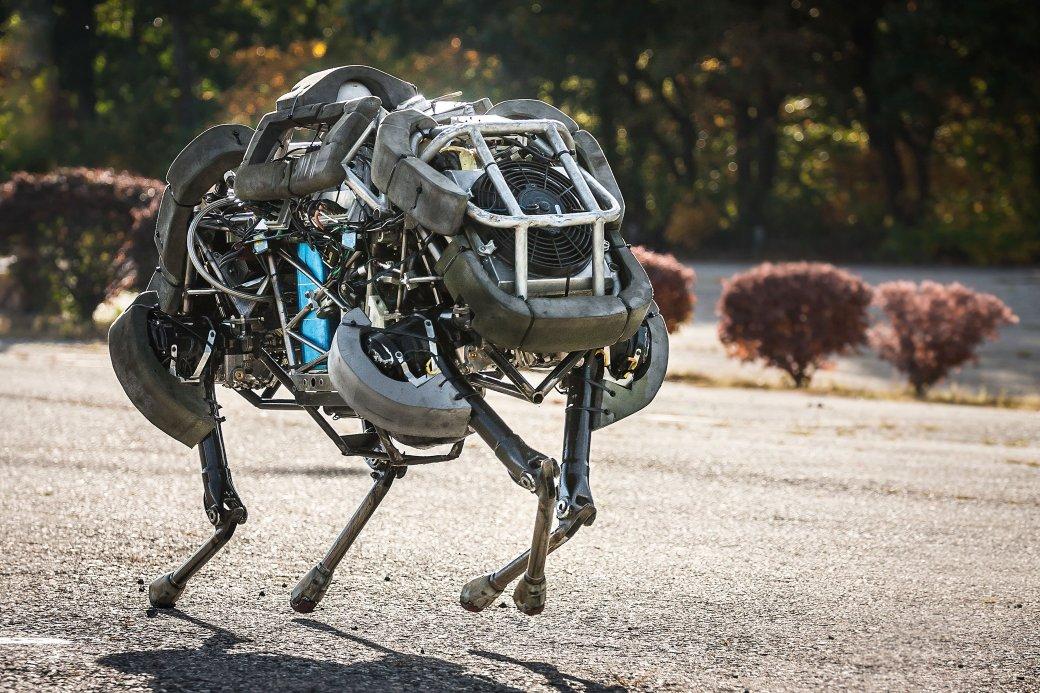 Бездомных роботов-собак Boston Dynamics возьмет под крыло Toyota - Изображение 1