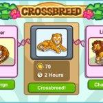 Скриншот Zoo Story 2 – Изображение 5