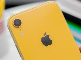 iPhone XR2019: самый доступный флагман Apple показался нафото вразных цветах