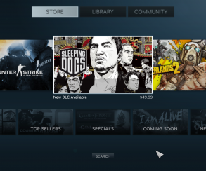 Релиз Steam Big Picture и новая распродажа