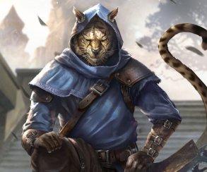 Данмеры? Аргониане? Каджиты? Какая ваша любимая раса изсерии The Elder Scrolls?