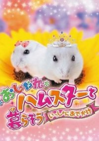 Kuma-Tomo – фото обложки игры