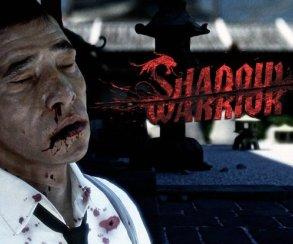 В игре Shadow Warrior появилось оружие из The Walking Dead