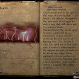 Скриншот Magic & Mayhem – Изображение 2