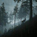 Скриншот Morels: The Hunt – Изображение 5