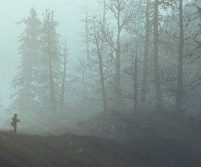 Фан-арты недели. Как выгляделибы The Witcher 3, Battlefield 1 иFallout 4 в2D