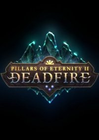Pillars of Eternity 2: Deadfire – фото обложки игры