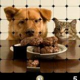 Скриншот PhotoPuzzle – Изображение 1