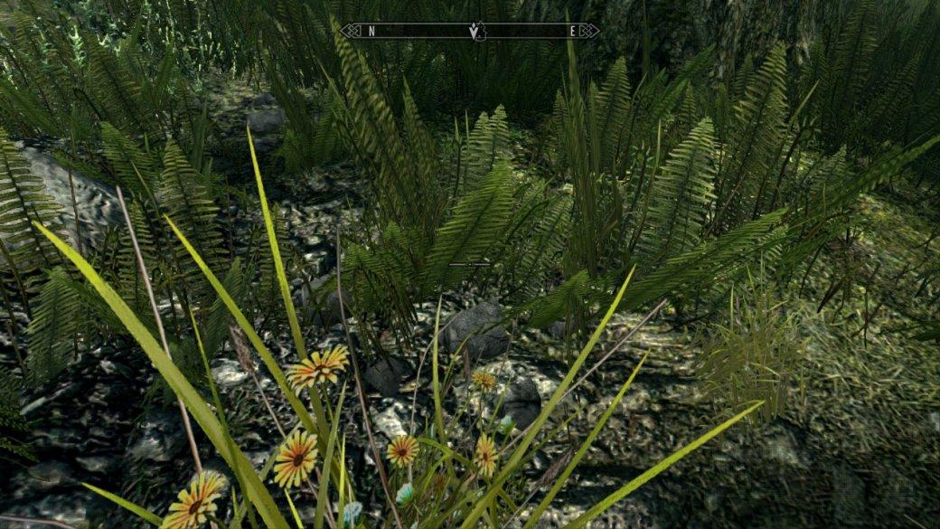 Как TES 5: Skyrim выглядит иработает наNintendo Switch? Отвечаем скриншотами игифками | Канобу - Изображение 3419