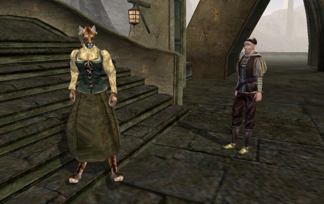 Тодд Говард против ремастера Morrowind и новых частей Fallout от сторонних разработчиков | Канобу - Изображение 1611